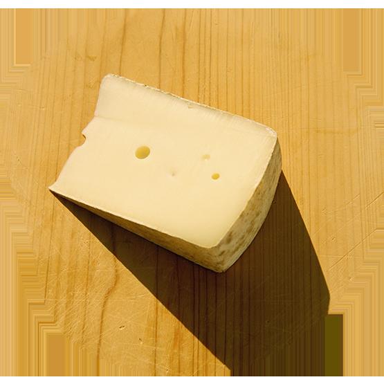 Die Energiezukunft hat begonnen: Mit einem Stück Käse