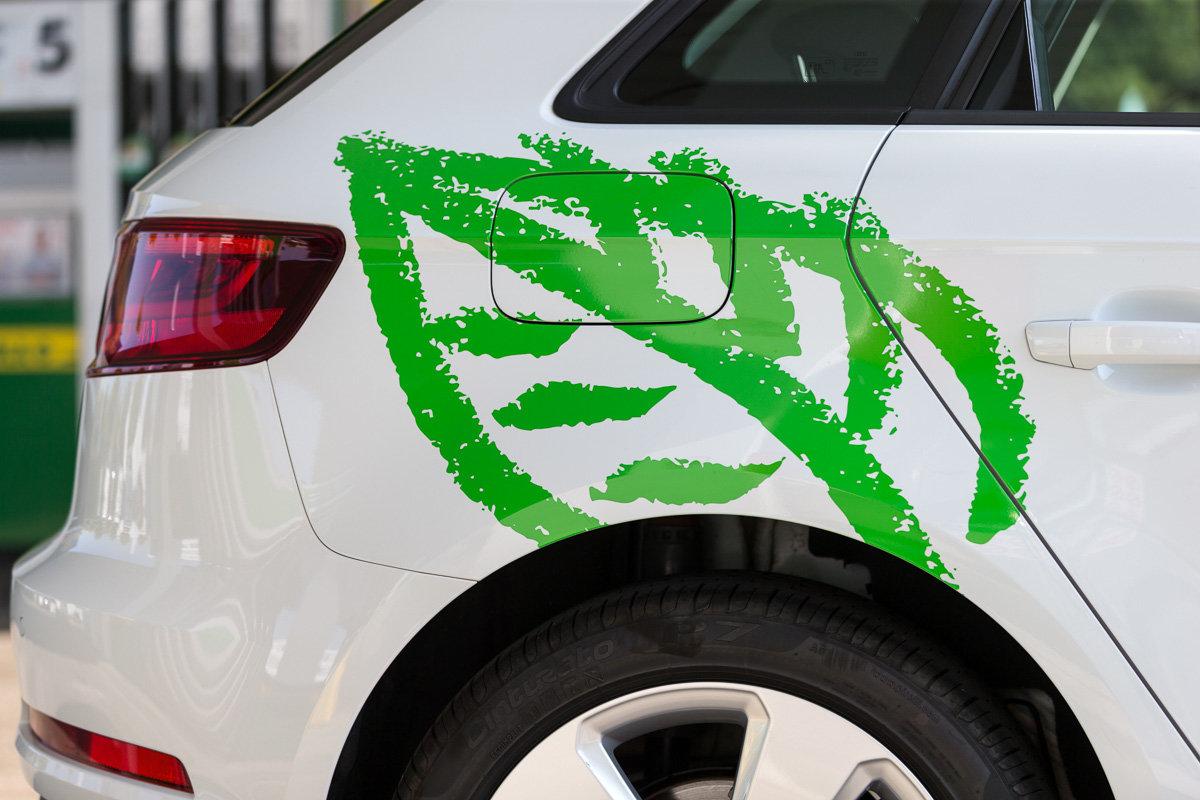 Welche Autos sind klimaschonend?
