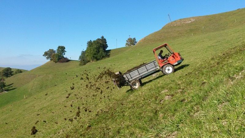 Nur gerade 6 Prozent des anfallenden Hofdüngers werden in der Landwirtschaft energetisch genutzt.
