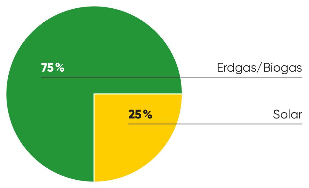 Grafik Erdgas/Biogas 75%, Solar 25%